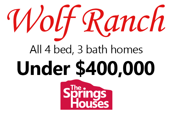 4 Bedroom, 3 Bathroom homes in Wolf Ranch for Under $400,000
